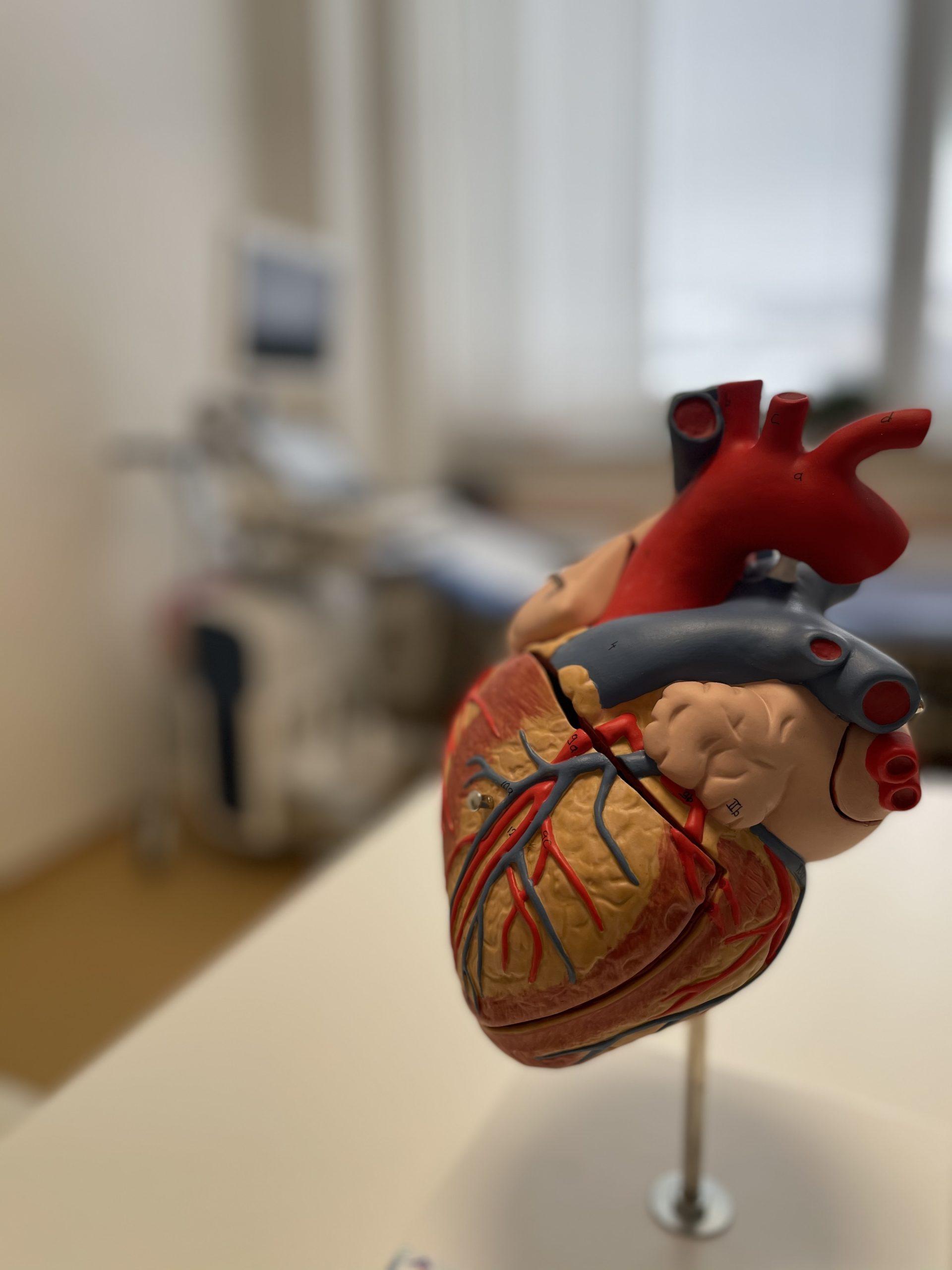 Kardiologie Vsetin sro Srdce
